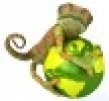 Chameleon School of Construction Ltd