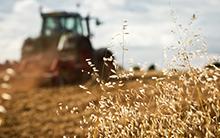 Agricultural Economics – Fast Track