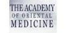 The Academy of Oriental Medicine