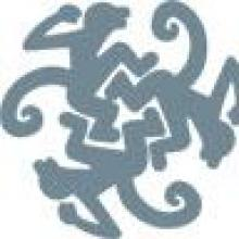 Monkey Puzzle Training & Consultancy