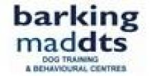 Barking Mad DTS