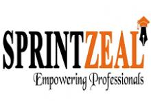 SprintZeal